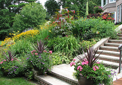 Residential-Landscaping-Heidi's-GrowHaus-&-Lifestyle-Gardens.jpg