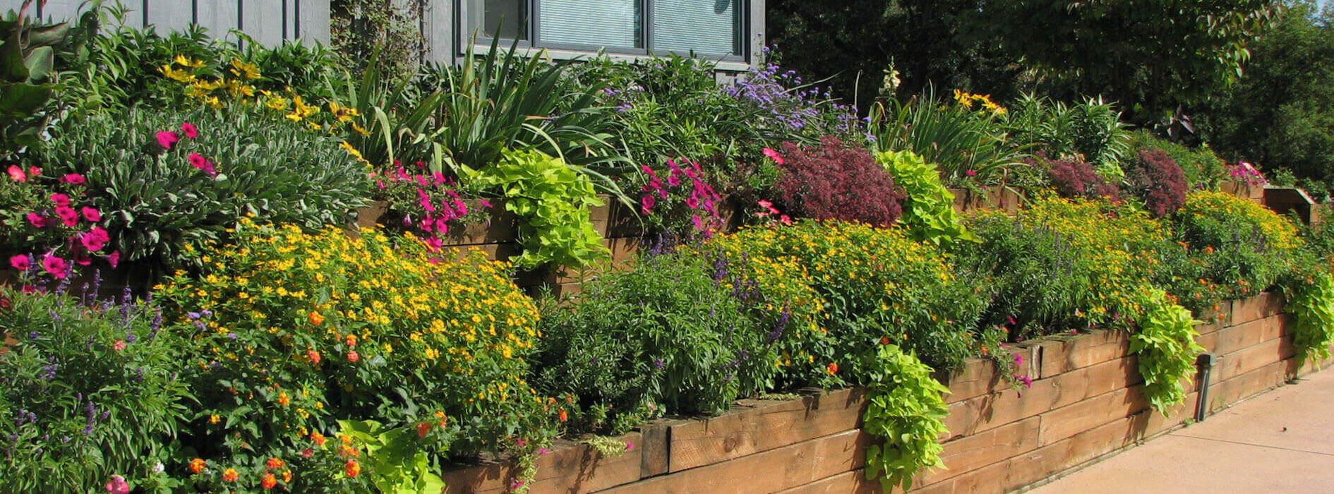 Lifestyle-Gardens_Heidis-GrowHaus-Lifestyle-Gardens2