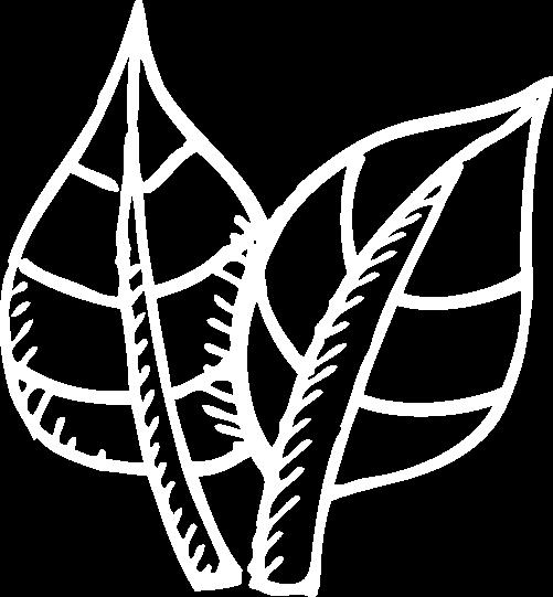 Growhaus Green Bucks Program