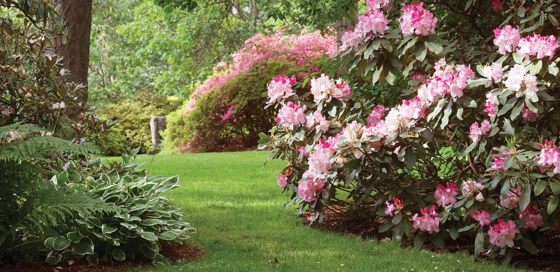 Lifestyle-Gardens_Slider4