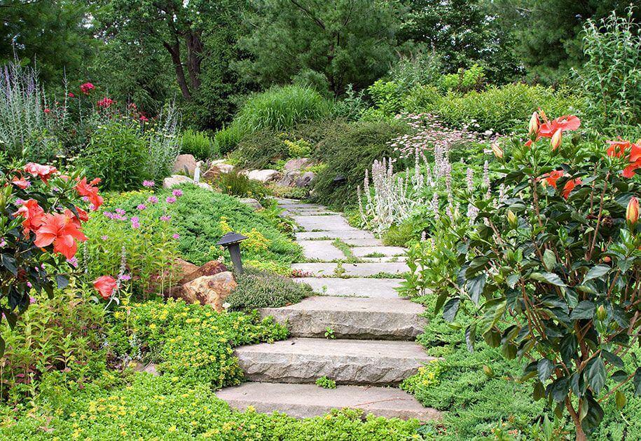 Perennial-Pathway-Heidi's-Lifestyle-Gardens-Mobile-Image