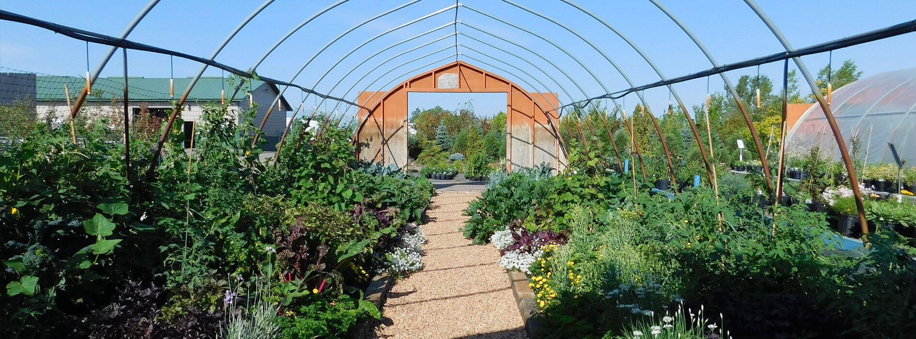 Heidis-GrowHaus-Lifestyle-Gardens_General-Banner5