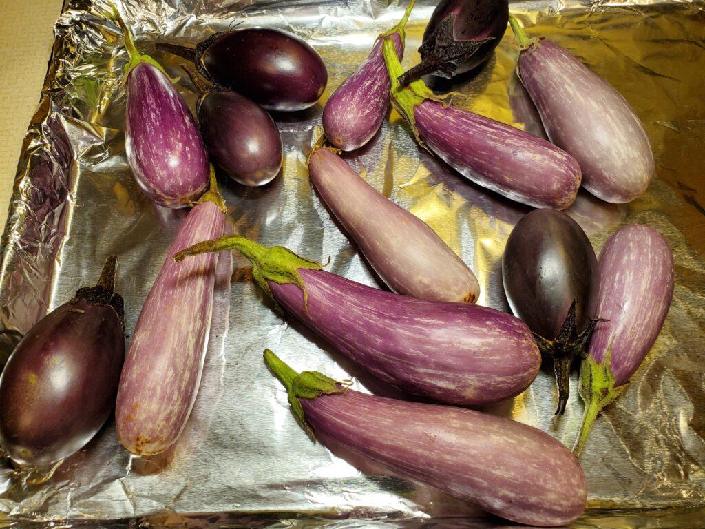 Fairytale Eggplants for Fairytale Eggplant Ganoush Recipe