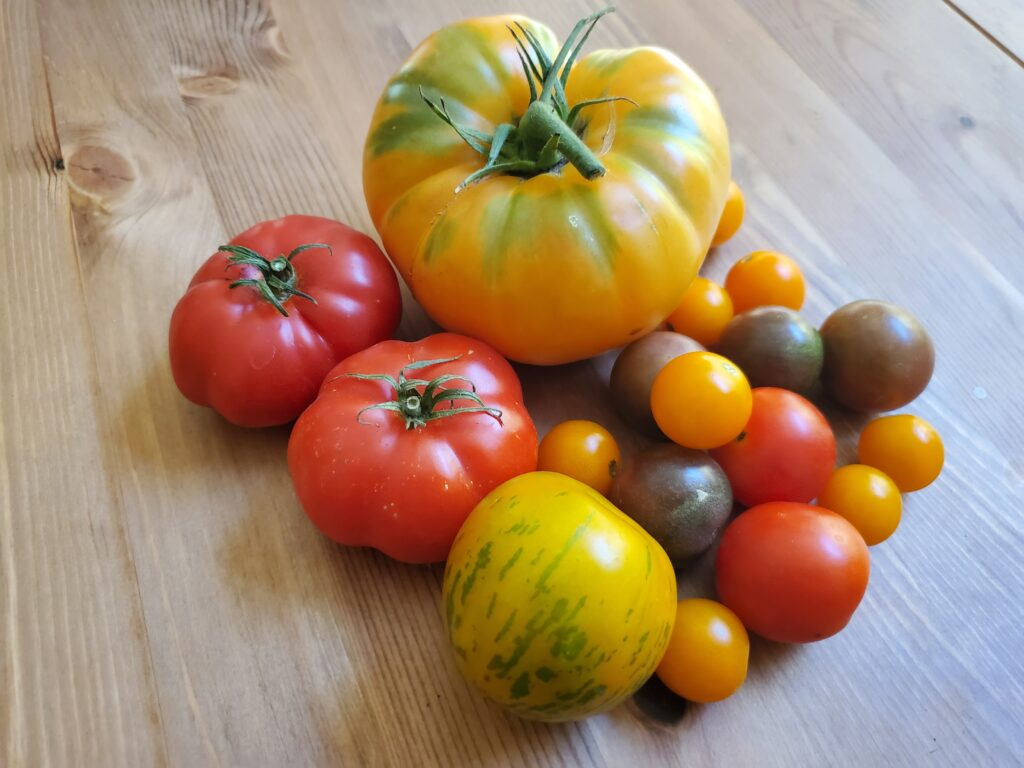 Tomatoes for Spiced Tomato Jam Recipe